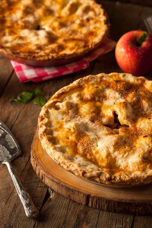 ny hemlagad pie för äpple royaltyfri foto