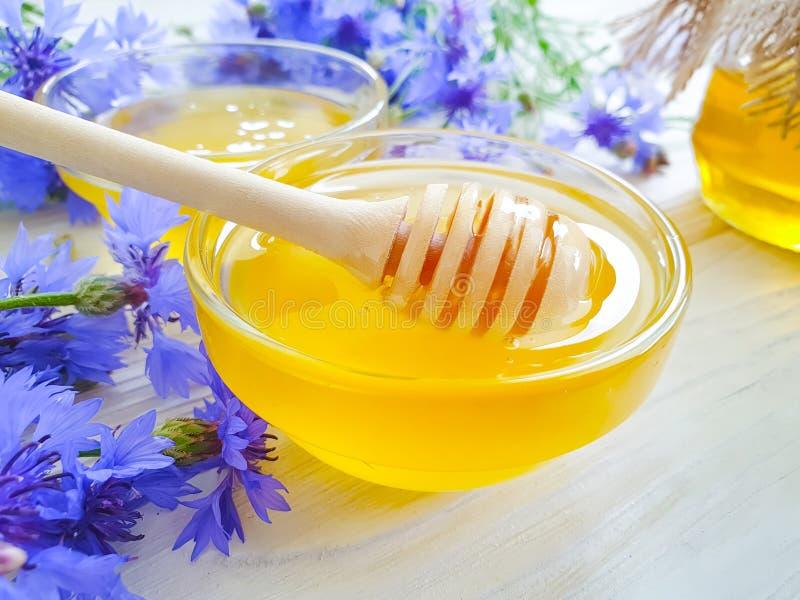 Ny honungblommaknapweed på vit träbakgrund fotografering för bildbyråer