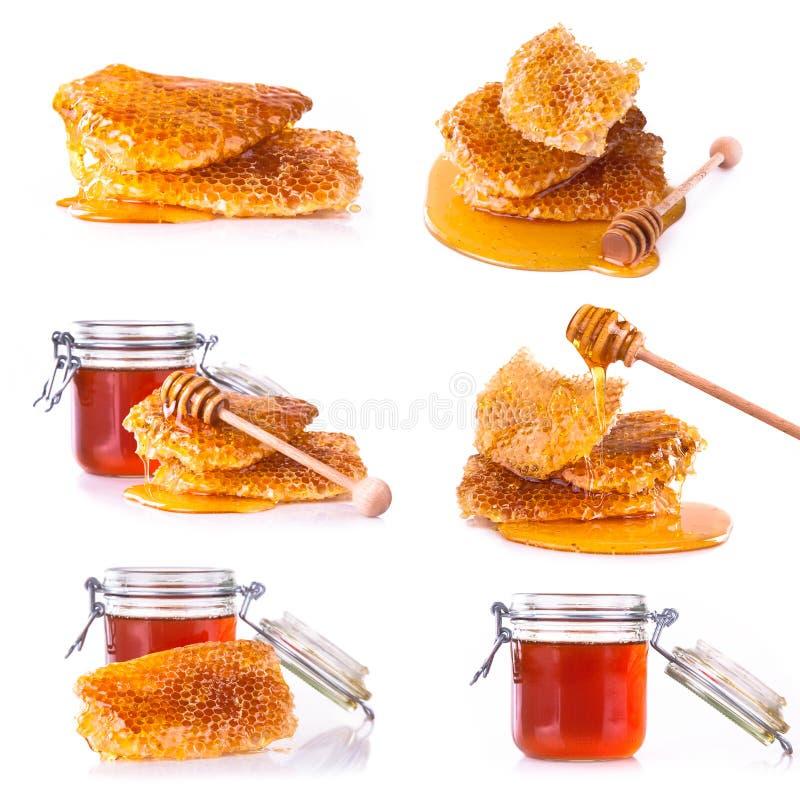 Ny honungsamling på vit bakgrund royaltyfria bilder