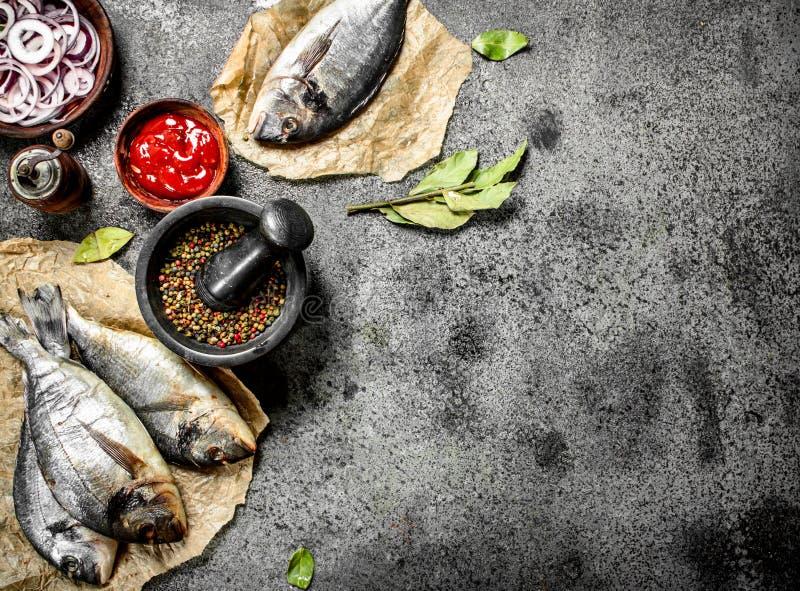 Ny improviserad Dorado fisk med sås och kryddor royaltyfria foton