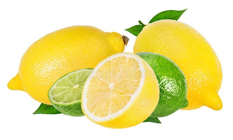 Ny isolerade citron och limefrukt royaltyfria foton