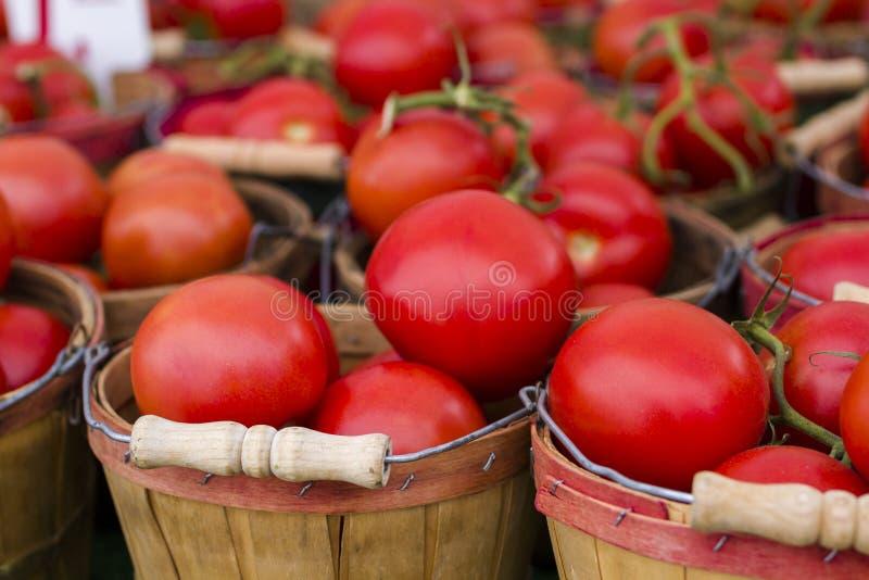 Ny jordbruksprodukter arkivfoto