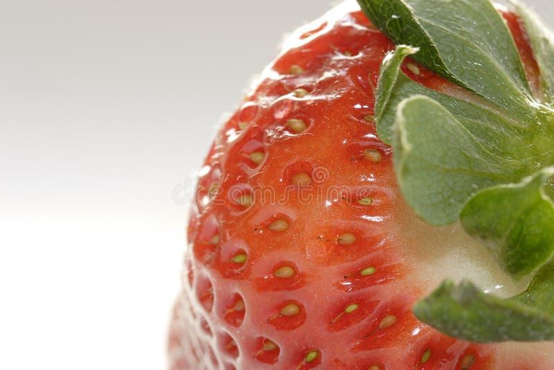ny jordgubbe arkivfoton