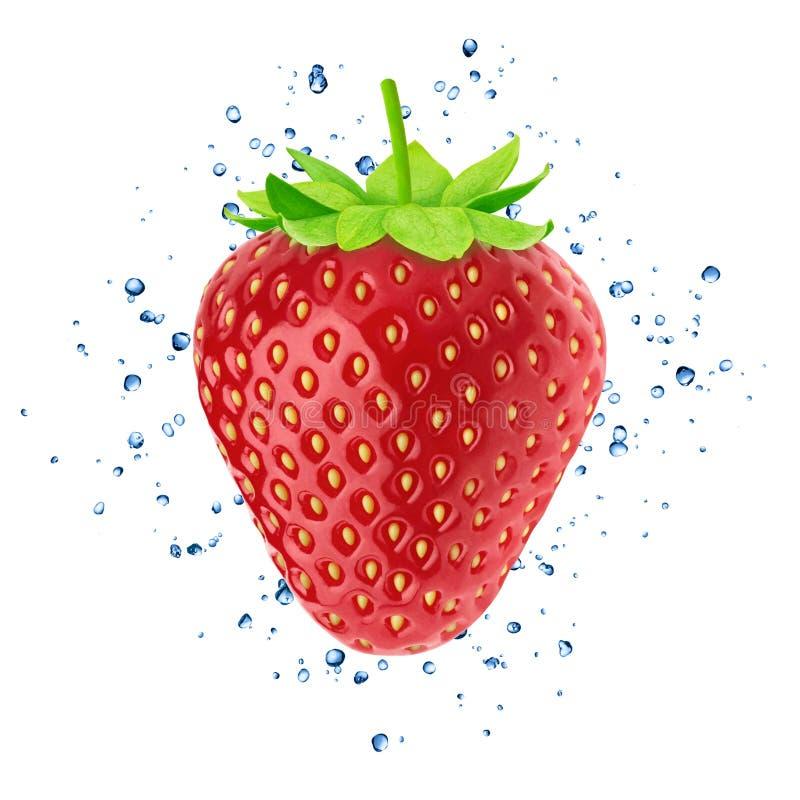 Ny jordgubbe med vattenfärgstänk som isoleras på vit bakgrund arkivfoton