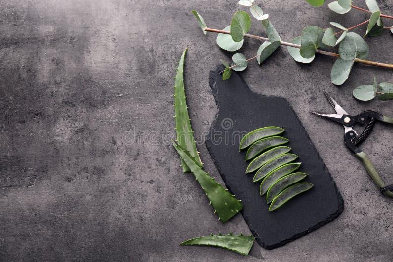 Ny klippt aloe vera lämnar med pruner på den gråa tabellen royaltyfri fotografi