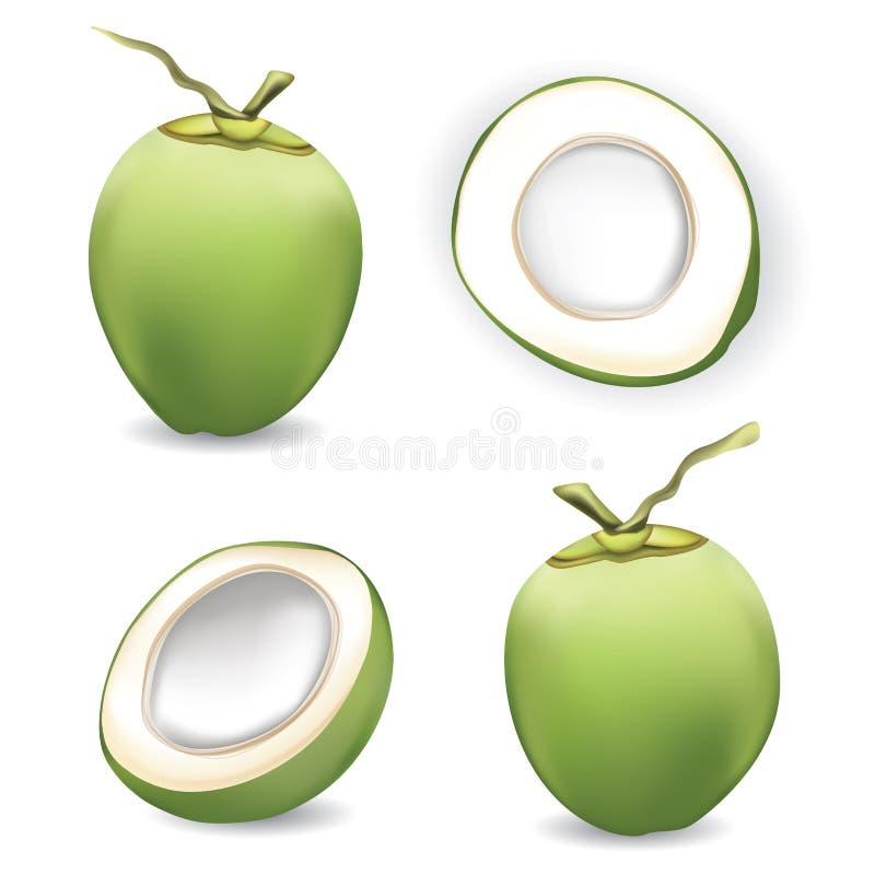 Ny kokosnöt med skivakokosnöten på vit bakgrund vektor illustrationer