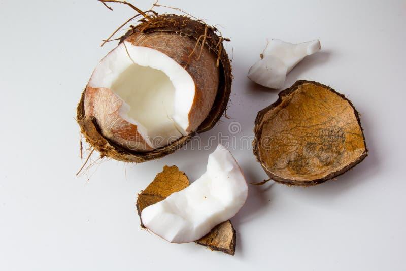 Ny kokosnöt på vit bakgrund fotografering för bildbyråer