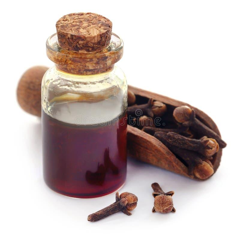 Ny kryddnejlika med olja i en krus arkivbild