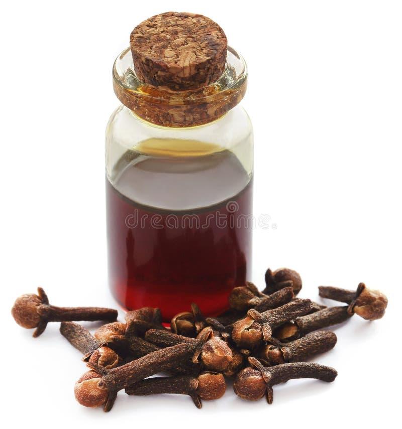 Ny kryddnejlika med olja i en krus arkivfoto