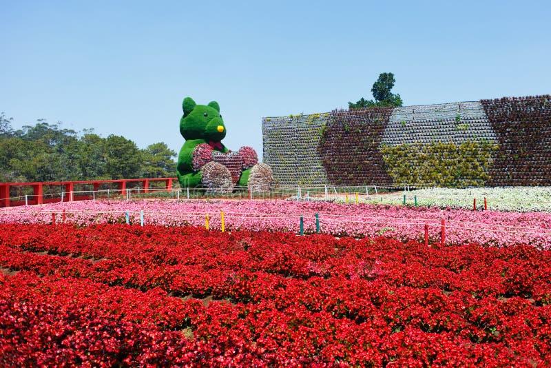 NY LANTGÅRD för DALAT - pittoresk blommaträdgård och ställe för att besöka i Da-Lat arkivfoto
