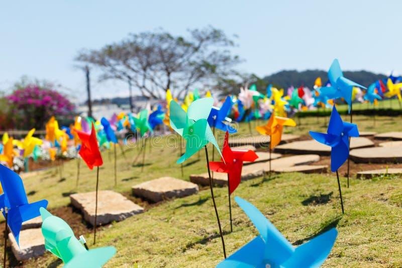 NY LANTGÅRD för DALAT - pittoresk blommaträdgård och ställe för att besöka i Da-Lat royaltyfria bilder