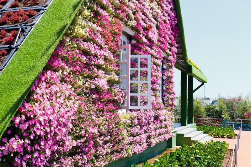 NY LANTGÅRD för DALAT - pittoresk blommaträdgård och ställe för att besöka i Da-Lat royaltyfri fotografi