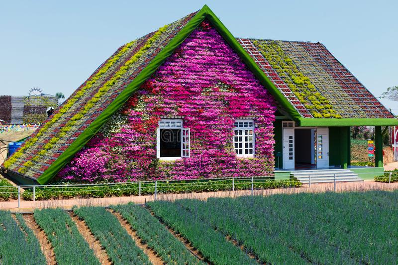 NY LANTGÅRD för DALAT - pittoresk blommaträdgård och ställe för att besöka i Da-Lat arkivfoton