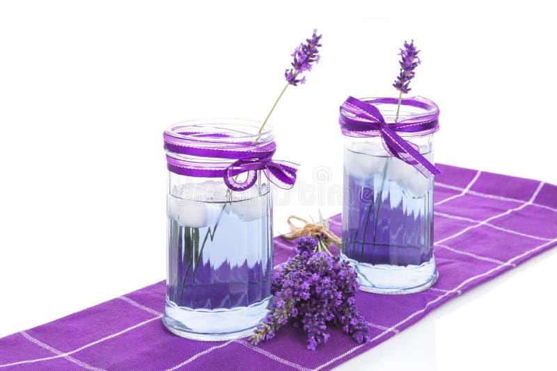 Ny lavendellemonad royaltyfri bild