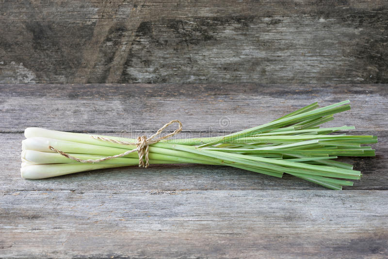 Ny lemongrass (citronellolja) på träbakgrund - krydda för hälsa royaltyfria foton