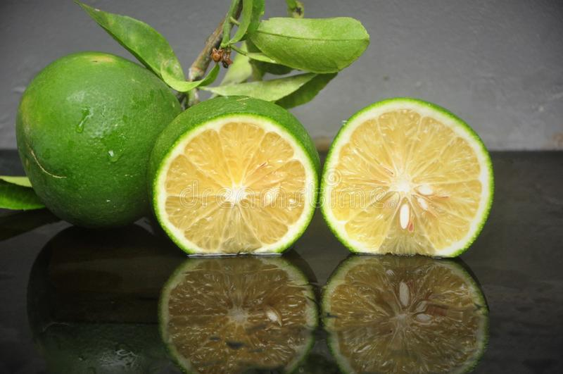 ny limefrukt royaltyfri fotografi