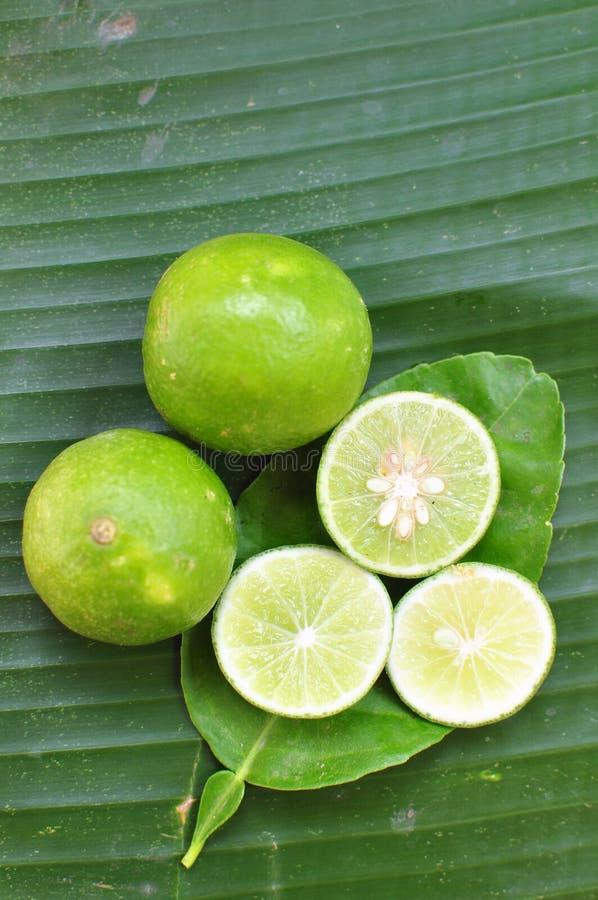 ny limefrukt bär fruktt grönsaker arkivbilder