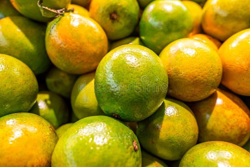 Ny, ljus grön apelsinbakgrund royaltyfri foto