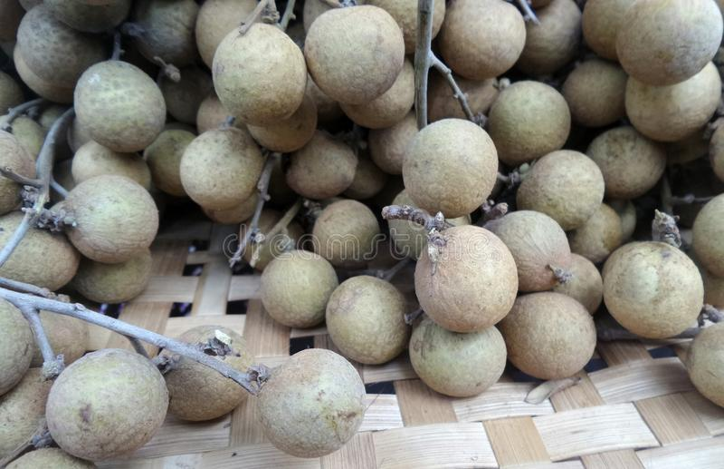 Ny Longan på bambukorg royaltyfri fotografi