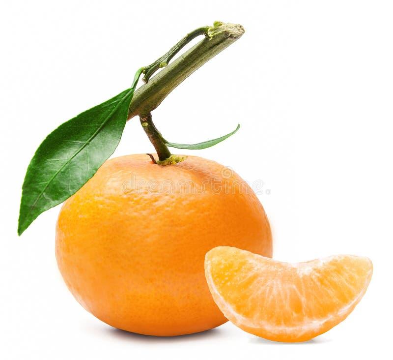 Ny mandarin på en filial med det gröna bladet royaltyfri foto