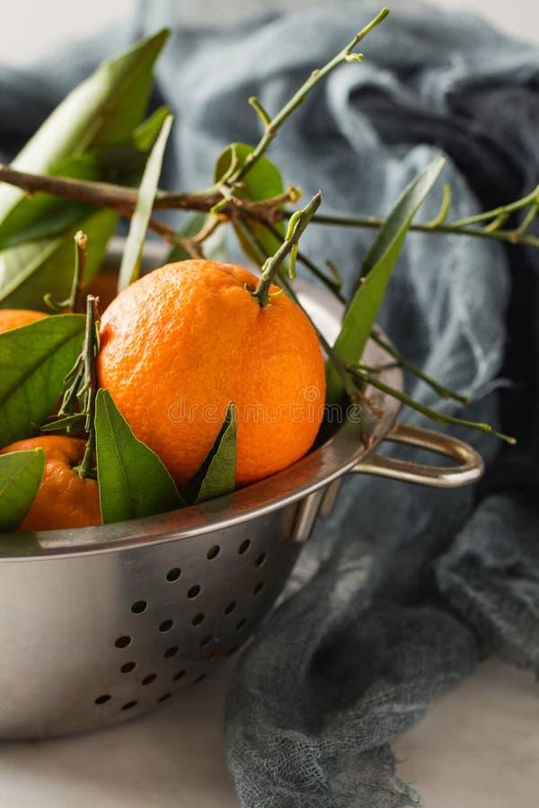 Ny mandarinfrukt med sidor royaltyfria foton