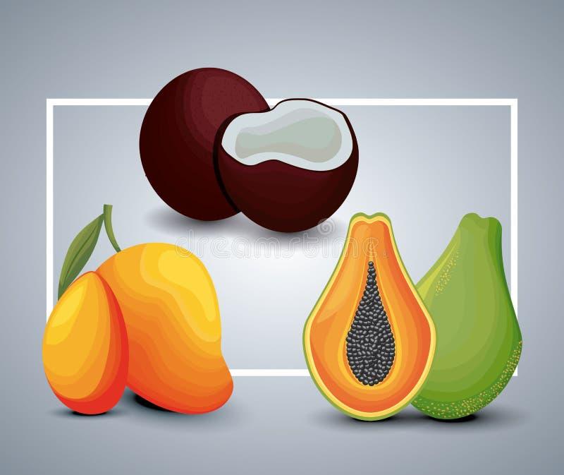 Ny mango med papayaen och kokosnöten royaltyfri illustrationer