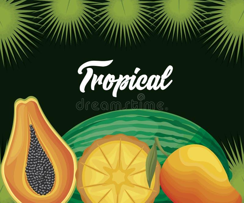 Ny mango med papayaen och vattenmelon vektor illustrationer