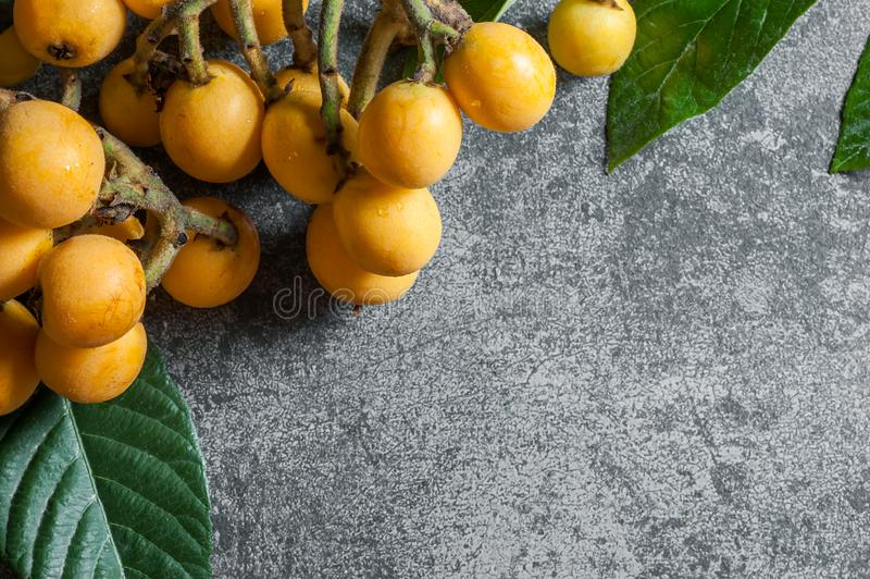 Ny mogen frukt för loquatjapanmispel med filialen och bladet på den gråa lantliga tabellen royaltyfri bild