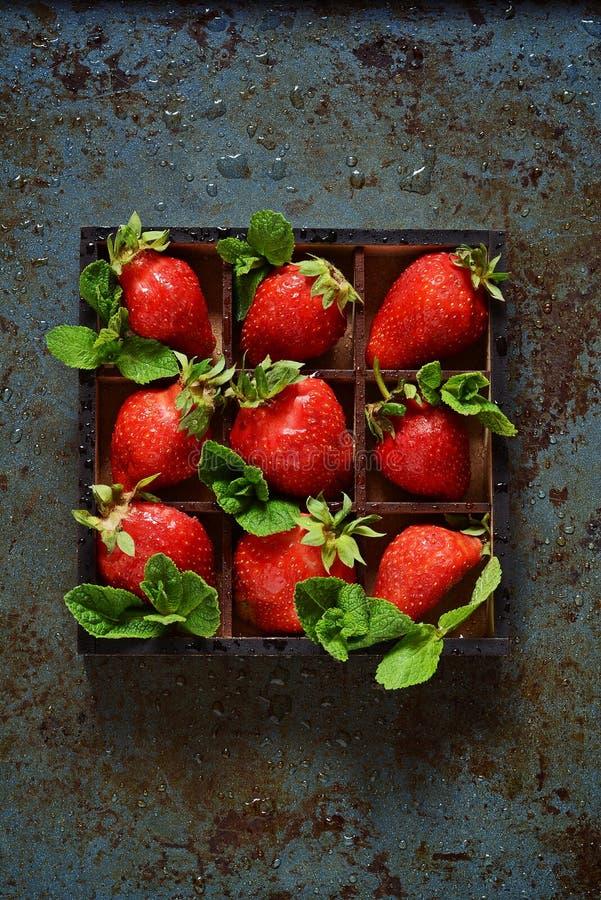 Ny mogen jordgubbe på en mörk bakgrund royaltyfri foto