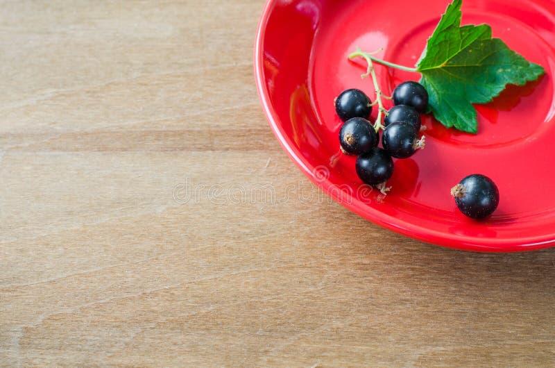 Ny mogen organisk svart vinbär i platta royaltyfri bild