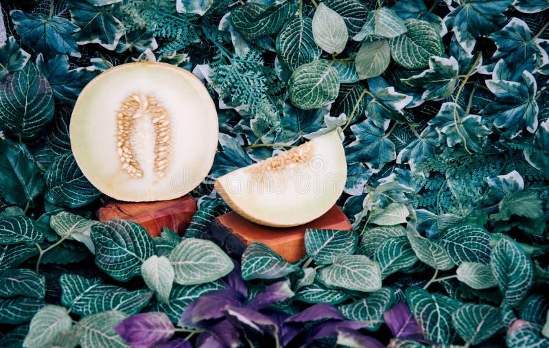 Ny mogen randig skivad melon arkivbild