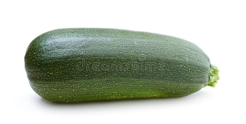 Ny mogen zucchini som isoleras på en vit arkivbilder