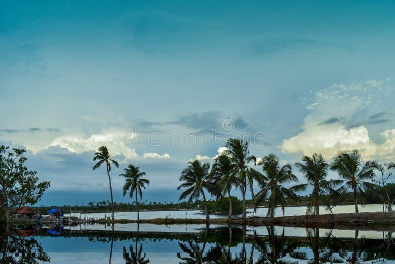 Ny morgon för södra kerala by arkivfoton