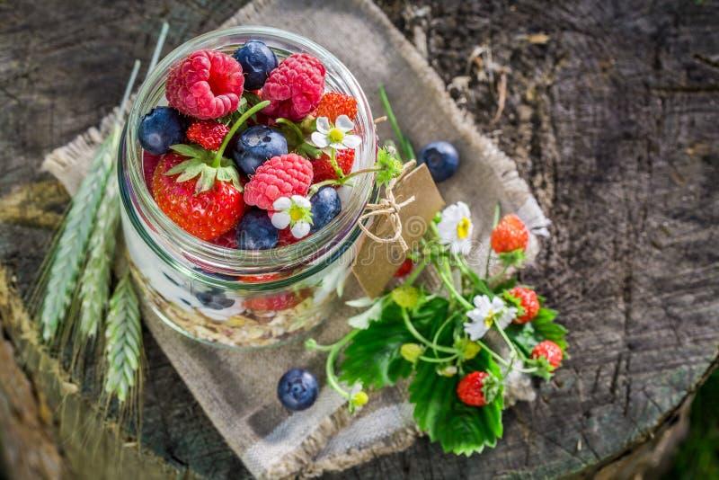Ny mysli med bärfrukter och yoghurt i trädgård royaltyfri foto