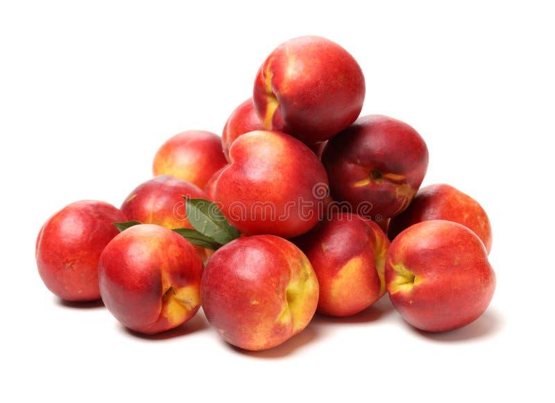 Ny nektarin eller persika fotografering för bildbyråer