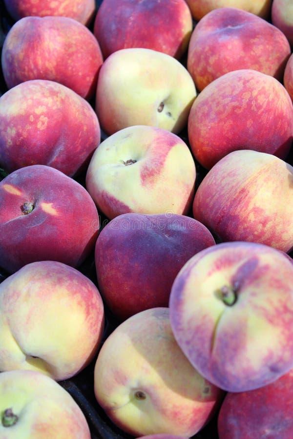Ny och söt röd persika arkivbilder