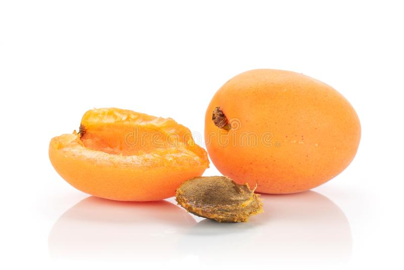 Ny orange aprikos som isoleras på vit arkivbilder