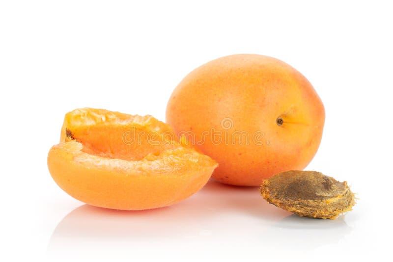Ny orange aprikos som isoleras på vit royaltyfria foton
