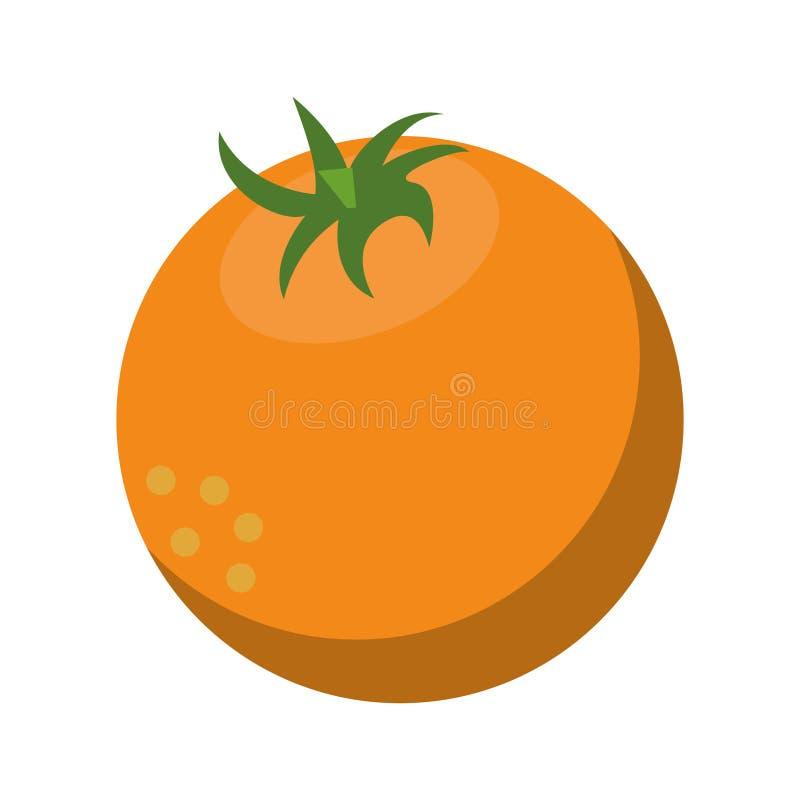 Ny orange fruktnatur stock illustrationer