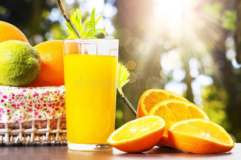 Ny orange fruktsaft i den glass dryckeskärlen, skivor av skivade apelsiner och korg på bakgrund av vårgräsplannaturen med solstrå royaltyfri bild