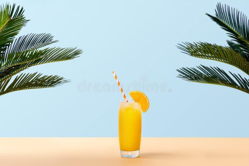 Ny orange fruktsaft på pastellfärgad bakgrund med palmblad royaltyfria bilder