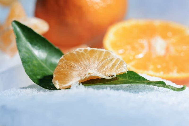 Ny orange mandarinfrukt med gröna sidor frysas på förkylningblåttis royaltyfria foton