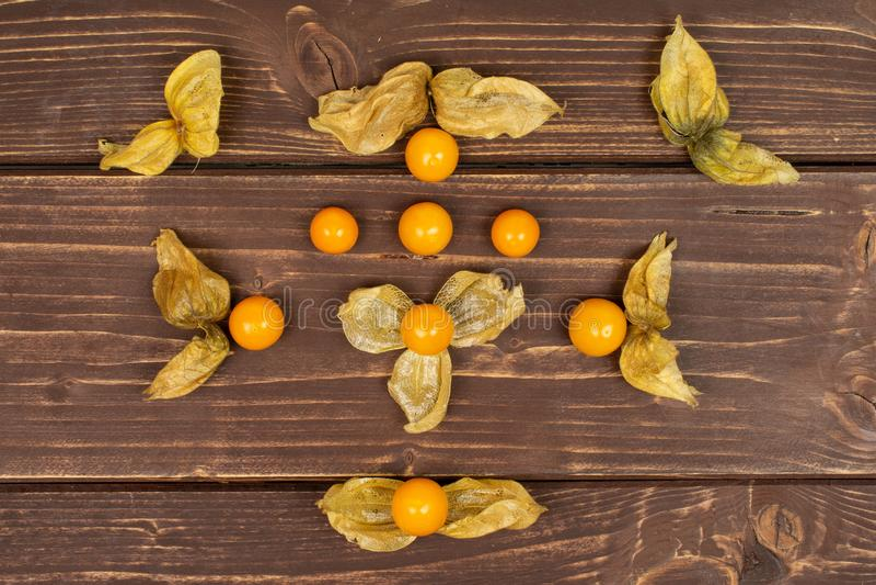 Ny orange physalis på brunt trä fotografering för bildbyråer