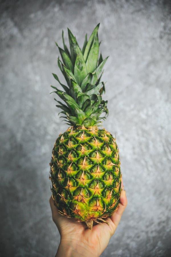 Ny organisk ananas med en tropisk blick som rymmer i hand på den gråa och vita bakgrunden arkivbilder