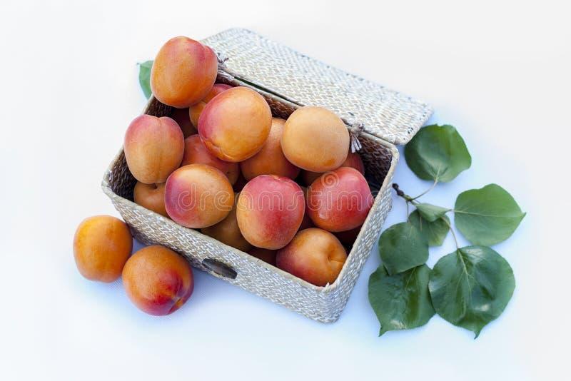 Ny organisk aprikos i en öppen ask för fiber P? vitbakgrund Några aprikors med sidor royaltyfri fotografi