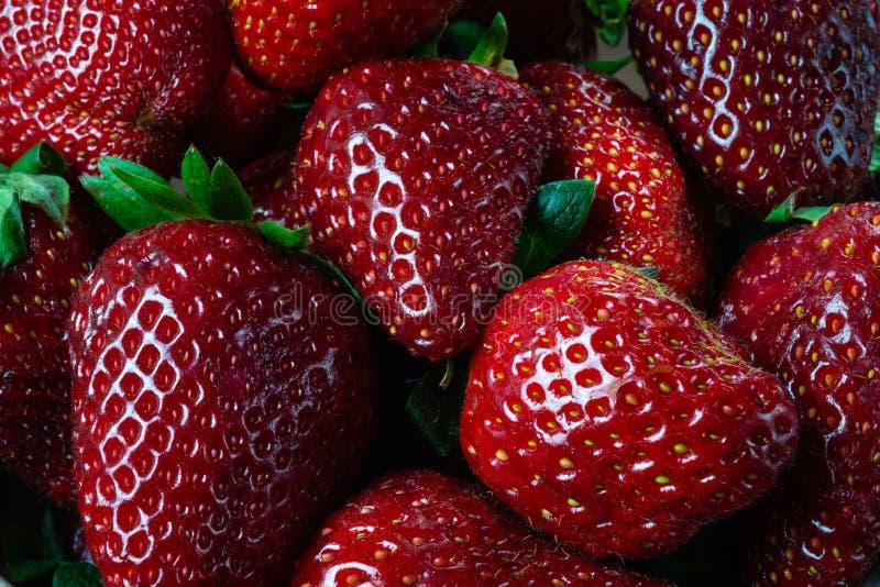 Ny organisk jordgubbefruktbakgrund Closeup för bästa sikt - bild arkivfoton