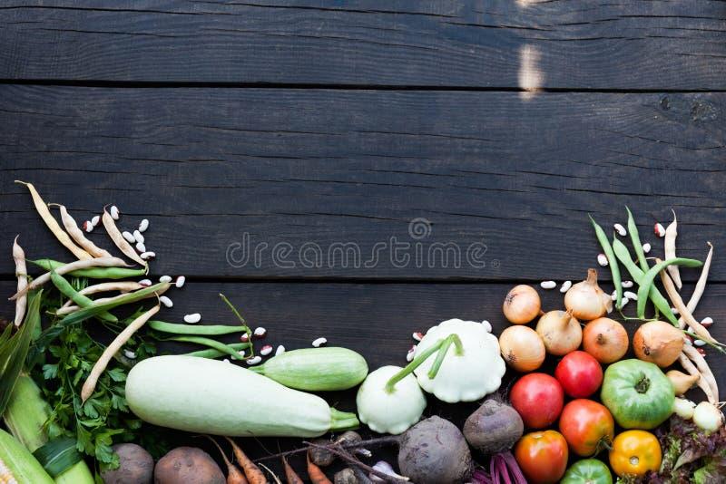 Ny organisk lantgårdhöstmat på den svarta trätabellen Kopiera utrymme f?r text royaltyfria bilder
