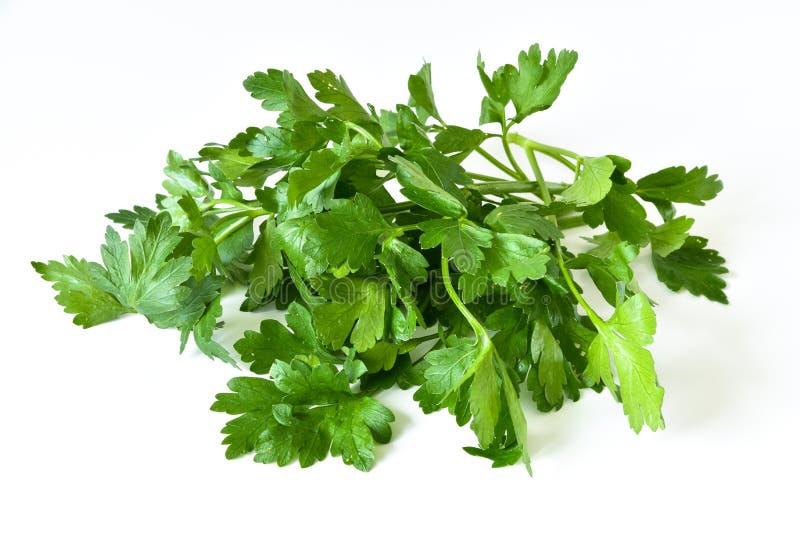 ny parsley