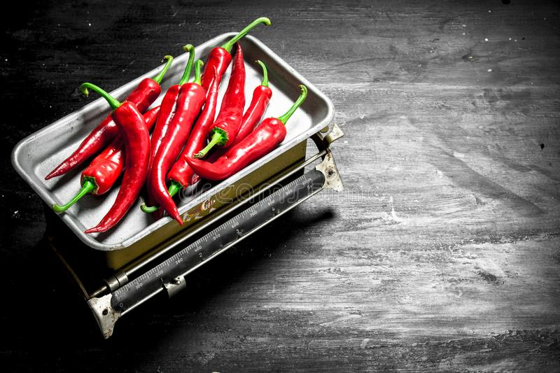 Ny peppar för varm chili på våg arkivfoto