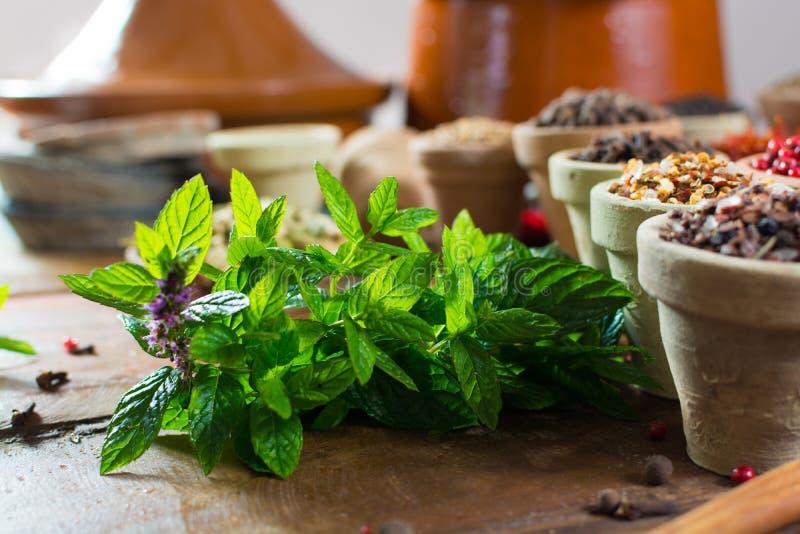 ny pepparmint av grönmyntasidor, växt, ordnar till för att använda, godan arkivbild